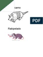 Cachicamo.docx