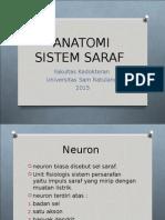 ANATOMI-SARAF