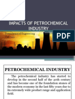 Impacts of Petrochemical Industry