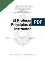 El Profesor Principios del Instructor