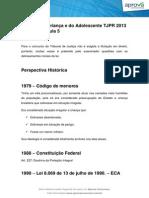 estatuto_da_crianca_e_do_adolescente_tjpr_2013_intensivao_aprova_premium (4).pdf