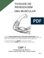 Atividade de apendizagem muscular 2_20130501214039.pdf