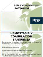 5ta Clase Hemostasia.ppt