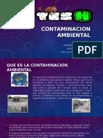 Contaminacion Ambiental Desarrollo Sus.