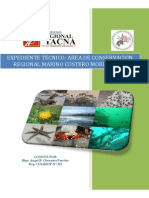 Expediente AMP Morro Sama Tacna
