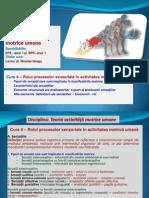 Curs 4 TAMU_2012.pdf