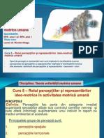 Curs 5 TAMU_2012.pdf