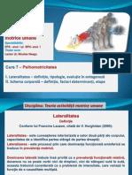 Curs 7 TAMU_2012.pdf