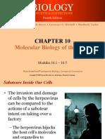 101 Mollecular Bio_of Gene