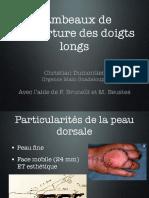 Lambeaux Doigts Longs-Cours revol