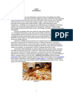 Pembuatan Amoksisilin Dengan Mikroorganisme Penicillium 2