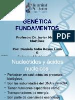 Genética Fundamentos