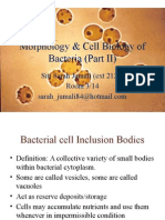 MIC 159 Morphology Cell Biology of Bacteria II