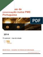 Os Sistemas de Informação Numa PME Portuguesa David Grave Consultor Em Sistema de Informação