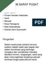 Sistem Saraf Pusat Ppt