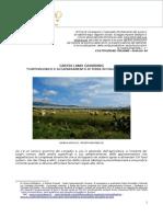 Land Grabbing - Nuovo latifondo