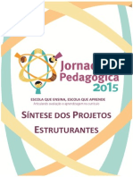 sintese-dos-projetos-estruturantes.pdf