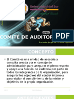 Auditoria Interna Exposicion