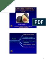 Botanica Palto.pdf