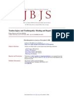 Jbjs Tendonopathy Tendinosis Healing Repair
