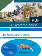 Aula 2 - Relações Ecológicas