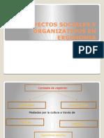 Aspectos Sociales y Organizativos en Ergonomia