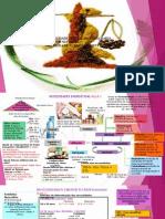 Nutrição e Dietetica II Portfolio
