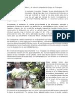 Las Plantas Comestibles y Su Relación Con Población Zoque de Tectuapan