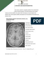 Basic Basal Ganglia Circuitry and Neurotransmitters