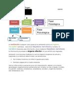 proceso sensoperceptivo (1)