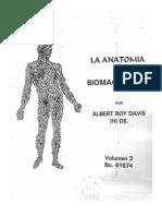 Anatomia Del Biomagnetismo