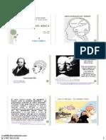 Neuropsicologia Básica Final