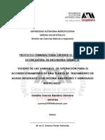 PROCESO ANAEROBIO-HUMEDAL ARTIFICIAL