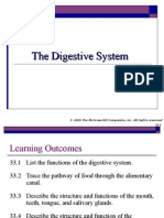 24856_The+Digestive+System