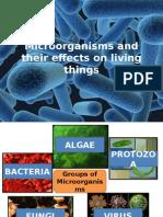 1 Microorganismsandtheireffectsonlivingthings 131228190117 Phpapp02