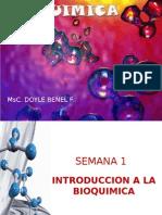 Bioquimica-Intro