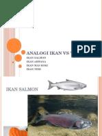 Analogi Ikan vs Wanita