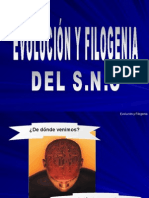 Evolucion y Filogenia .