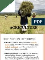 Health Economics- Agriculture (2D)