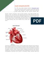 Penyakit Jantung Rematik.tinjauan Pustaka
