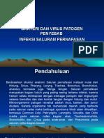 Bakteri Dan Virus Penyebab Ispa