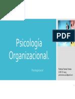 Organizacional._2015