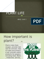 Existence of Plants