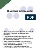 Biosinteza aminoacizilor prezentare