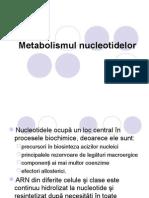 Metabolismul nucleotidelor prezentare