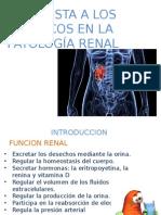 Patologia Renal en farmacología