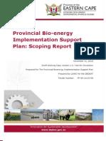 EC Bioenergy Implentation Support Plan Scoping Report