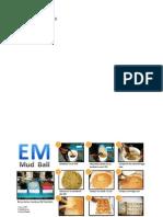 Cara Membuat EM.docx