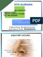 Lapkas THT-Rinitis Alergika