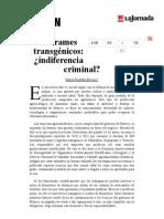 La Jornada- Derrames Transgénicos- ¿Indiferencia Criminal
